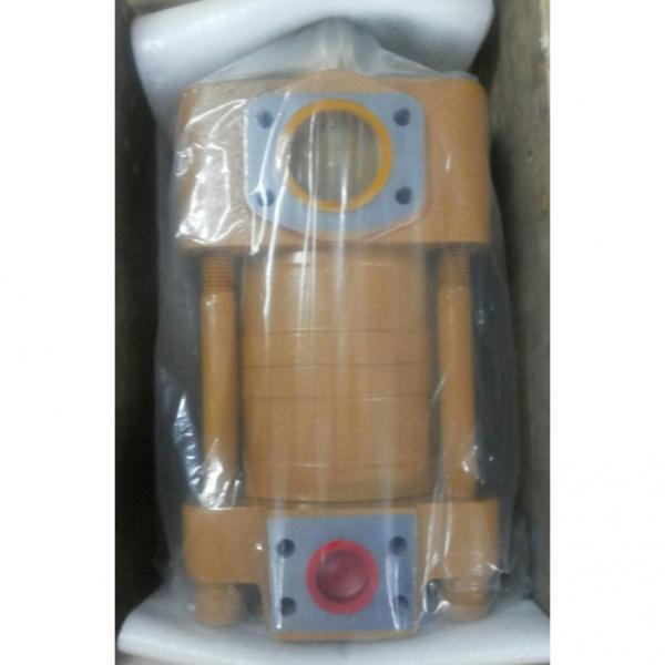 CQT63-80FV-S1376-A Bomba hidraulica de engranajes