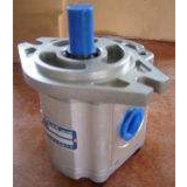 QT2323-6.3-6.3MN-S1162-A Bomba hidraulica de engranajes